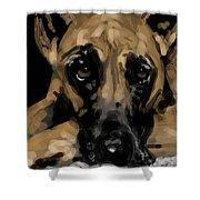 Sad Dog Shower Curtain
