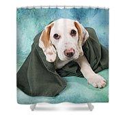 Sad Dog On Pastels Shower Curtain