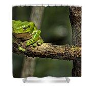 Sad Green Shower Curtain