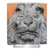 Sad Lion Shower Curtain