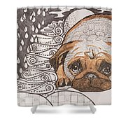 Sad Pup Shower Curtain