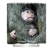 Safe In Mother's Arms Shower Curtain