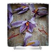 Saffron Flower Shower Curtain