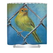 Safron Finch Shower Curtain