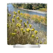 Sage Along The River Shower Curtain
