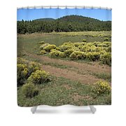 Sage In Bloom - Flagstaff Shower Curtain
