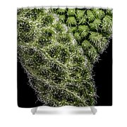 Sage Leaf Shower Curtain