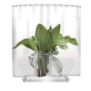 Sage Shower Curtain