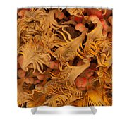 Sago Seeds Shower Curtain