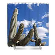 Saguaro Cacti  Shower Curtain