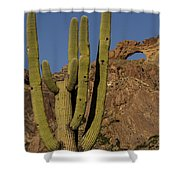 Saguaro Cactus Near Arch Shower Curtain