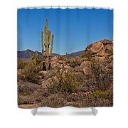 Saguaro Century Shower Curtain