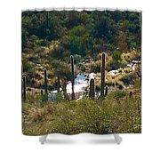 Saguaro Creek Shower Curtain