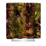 Saguaro Detail No. 21 Shower Curtain