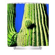 Saguaro Shower Curtain