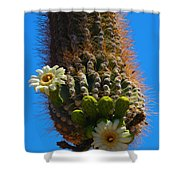 Saguaro Elephant Trunk Shower Curtain