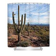 Saguaro Fields Shower Curtain