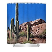 Saguaro National Monument Shower Curtain