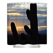 Saguaro National Park Sunset Landscape Shower Curtain
