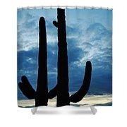Saguaro Nights Shower Curtain