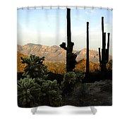 Saguaro Silhouette Shower Curtain