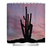 Saguaro Sunset  Shower Curtain