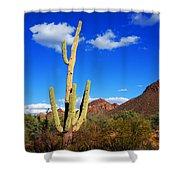 Saguaro Tree Shower Curtain