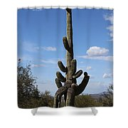 Saguaro With Extra Legs Shower Curtain