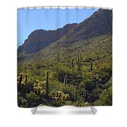 Saguaros And Other Greenery  Shower Curtain