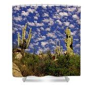 Saguaros Under A Cloud Dappled Sky Shower Curtain