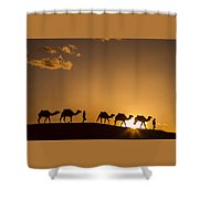 Sahara Desert Sunset Shower Curtain