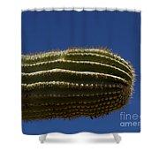 Sahuaro Arm-signed-#2414 Shower Curtain