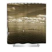 Sail Boats 1 Shower Curtain