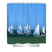 Sailboat Championship Racing 1 Shower Curtain