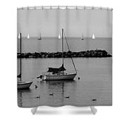 Sailboats And Ducks B-w Shower Curtain