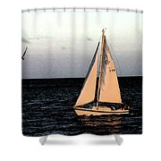 Sailing Off Of Diamond Head Shower Curtain