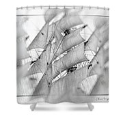 Sails Shower Curtain