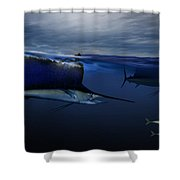 Sails Hunting Shower Curtain