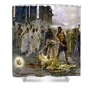 Saint Alban Shower Curtain