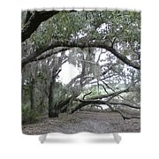 Saint Andrews Park Florida Shower Curtain