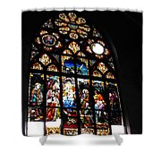 Saint Augustine Stained Glass Shower Curtain
