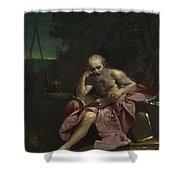 Saint Jerome In The Desert Shower Curtain