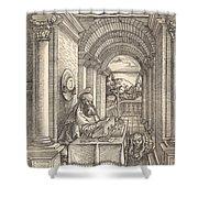Saint Jerome Writing Shower Curtain