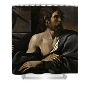Saint John The Baptist In Prison Visited By Salome Shower Curtain