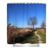 Saint Johns Marsh In Fall 3 Shower Curtain