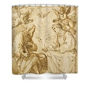Saint Paul And Saint Stephen Crowned By Angels Shower Curtain
