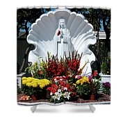 Saint Virgin Mary Statue #2 Shower Curtain