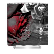 Saints And Sinners Shower Curtain