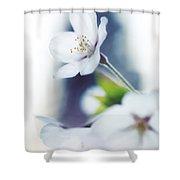 Sakura Cherry Blossom Flowers Shower Curtain