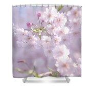 Sakura Trees Shower Curtain